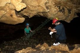 Alma & Coredores Caves
