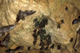 quiros_cave_102