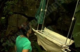 quiros_cave_bat_exploration_134