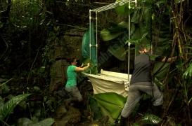 quiros_cave_bat_exploration_137