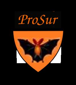 FUdG ProSur