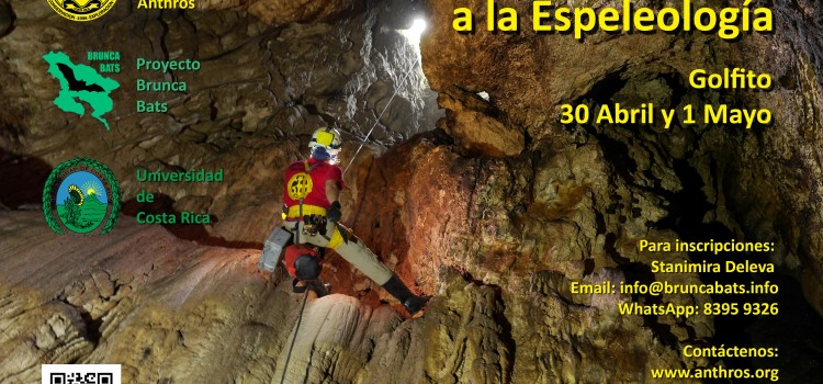 Workshop introduction to caving