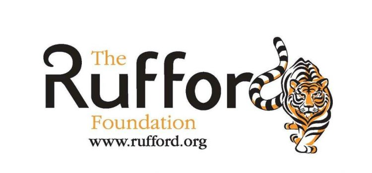 Final report for the first year of our project – The Rufford Foundation